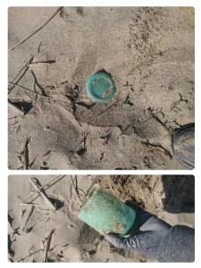 beachcleanup marina di sorso