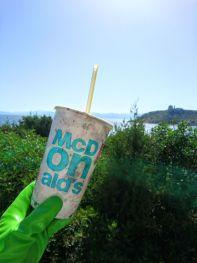 plastica monouso abandonata lungo le coste