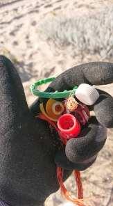 plastica pulizia spiaggia luglio 2020